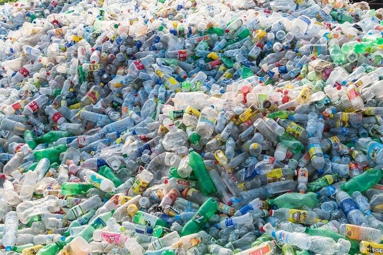 Environmental impact of single use plastic waste